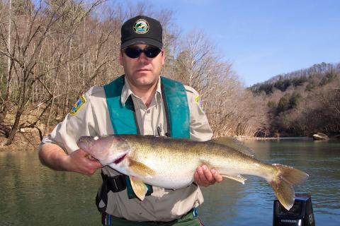 Kentucky afield outdoors new fishing regulations for 2016 for Kentucky river fishing
