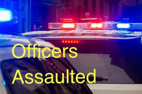 "Image result for officers assulted"""