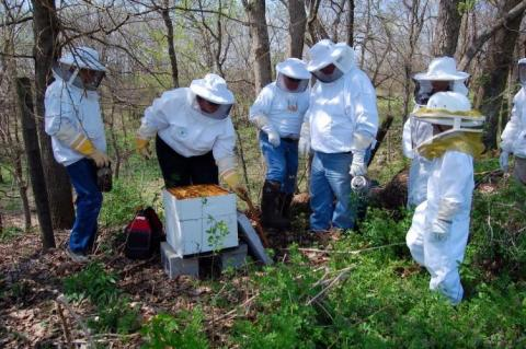 Beekeepers learn about beekeeping during a beginning beekeeping workshop session in Warren County in 2011.  Photo by Greg Drake II