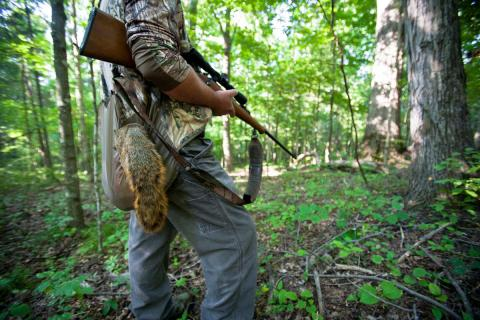 The fall squirrel season opens Aug. 20. Hunters should get a free copy of the 2016-2017 Kentucky Hunting and Trapping Guide prior to hunting season to brush up on season dates, changes from last year and other indispensable information. Copies are available wherever hunting licenses are sold or you may download a copy from the department's website at fw.ky.gov.