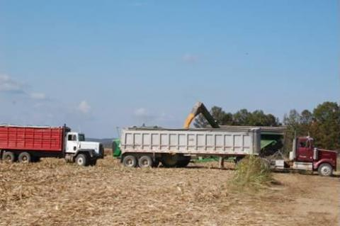 Farmers haul lots of farm products to the market each day.
