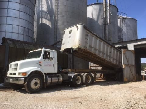 Truck unloads corn at Green River Feed Mill